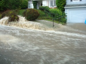 Underwater in East Bay